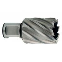 Корончатое сверло METABO Weldon 19 HSS, короткое 12х30 мм (626500000)